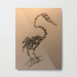 Anhinga Bird Pencil Drawing Metal Print