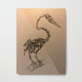 Anhinga Bird Pencil Drawing Metal Print