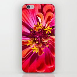 Red Zinnia iPhone Skin