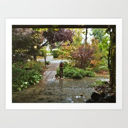 After the Rain, Victoria, B.C. Art Print