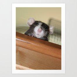Qt Rat Art Print