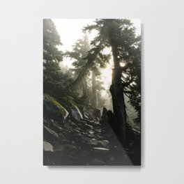 Foggy Footpath Metal Print