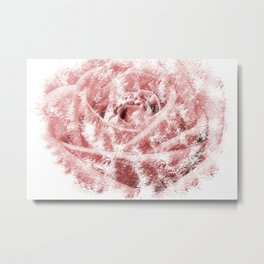 Faint Rose Metal Print