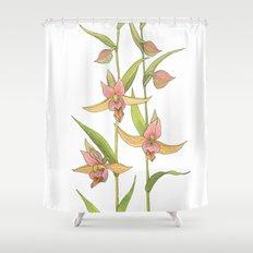 Stream Orchid - Epipactis gigantea Shower Curtain