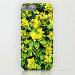 Painted Foliage iPhone Case
