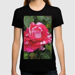 "A Rose Named ""Neil Diamond"" T-shirt"