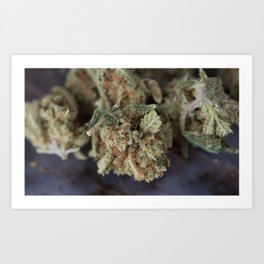 Medical Marijuana Deep Sleep Art Print
