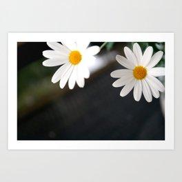 Flowers from the garden Art Print