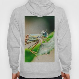 Dragonfly Macro Portrait In Nature, Nature Wall Art Print, Insect Close-Up Photography, Minimalism Hoody