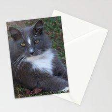 Addie Stationery Cards