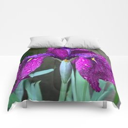 Sacred Trilogy: Water Irises Comforters