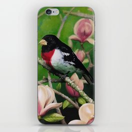 Spring Splendor iPhone Skin