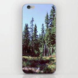Sahalie Falls Trail iPhone Skin