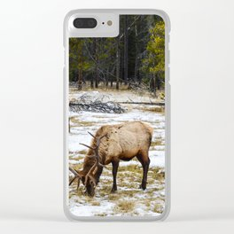 Jasper Locals- Male Elk/Wapiti Clear iPhone Case