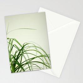 PONYTAIL PALM Stationery Cards