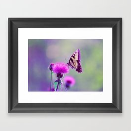 "Tiger Swallowtail ""Bokeh"" Framed Art Print"