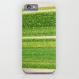 Leafs Stripes. green, white, stripes, nature, macro, leaf, leaves, decor, art, Society6. iPhone Case