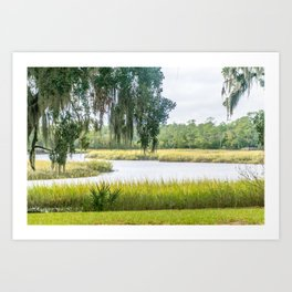 By the Bayou Art Print