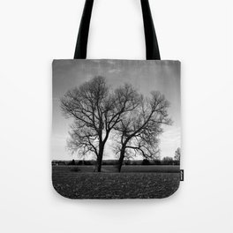 Concept nature : Two tree´s Tote Bag