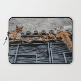 A Bunch of Cats Laptop Sleeve