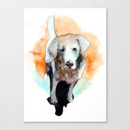 dog#20 Canvas Print