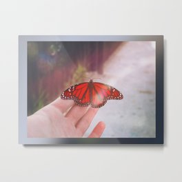 Red Butterfly in Hand Metal Print