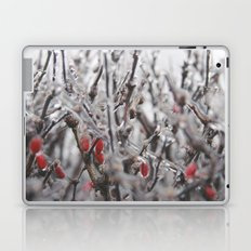 Ice Berries Laptop & iPad Skin