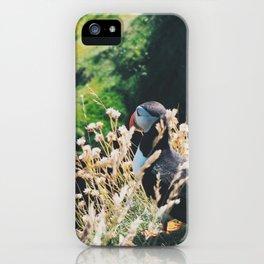 Puffin On Staffa Island iPhone Case