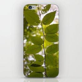 Up Up & Away iPhone Skin