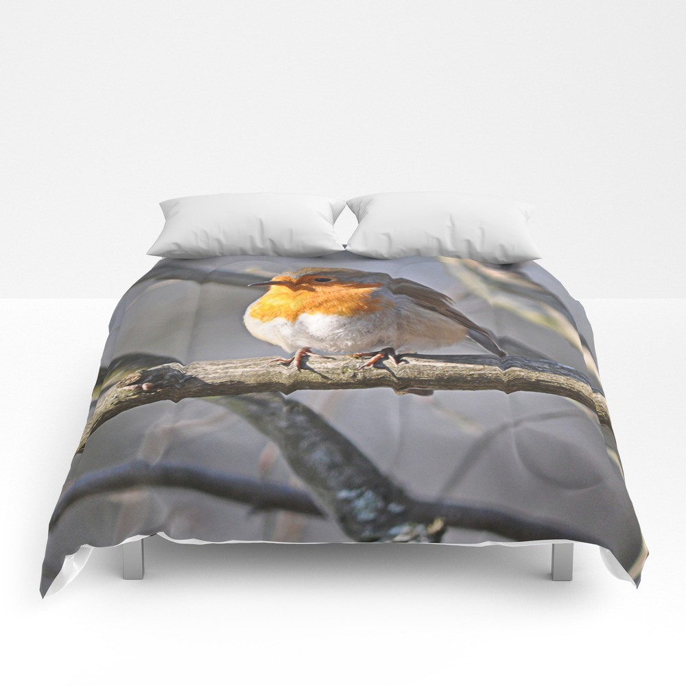 Robin Redbreast Comforter by Pirminnohr (CMF915575) photo