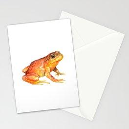 Rana de hojarasca (Eupsophus altor) Stationery Cards