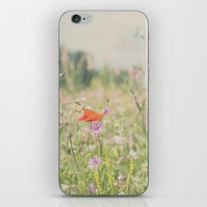 wild flowers ...  iPhone & iPod Skin