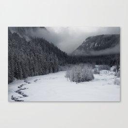 Snowy Morning Canvas Print