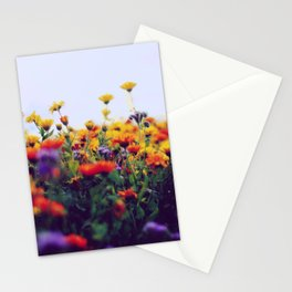 flower field II Stationery Cards