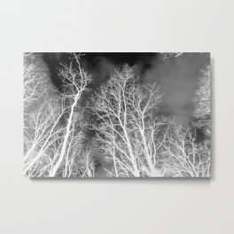 Black and whit naked trees forest, negative version Metal Print
