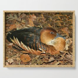 Fulvous Whistling Duck Serving Tray