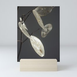 Minimalist Lunaria at Night Mini Art Print