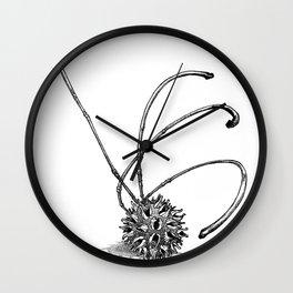 Gum Seed Wall Clock