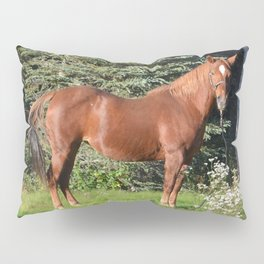 Miss Sadie - A horse, of course Pillow Sham
