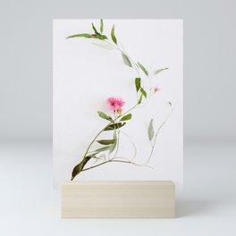 Eucalyptus Sway Mini Art Print