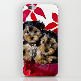 Snuggling Christmas Yorkie Puppies iPhone Skin