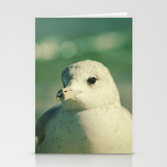 Seagull Close Up Stationery Cards
