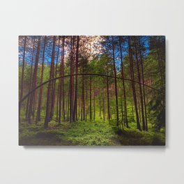 Magical Forest (Color) Metal Print