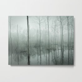 Foggy Forest I Metal Print