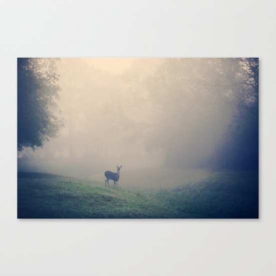 In the Quiet  Canvas Print