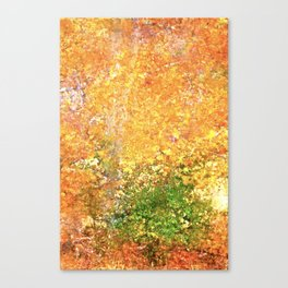 Abstract 296 Canvas Print