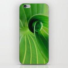 Leaf / Hosta with Drop (2) iPhone & iPod Skin