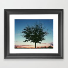 Stand Alone Tree Framed Art Print