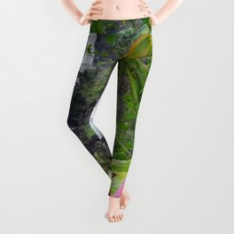 Umauma Falls Leggings