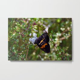 Watch Me Fly Away From Your Lies Metal Print